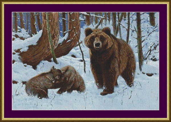 grizzlybears_frame